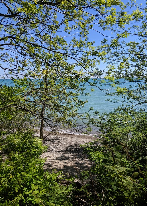 View of Lake Michigan from the Nature Center